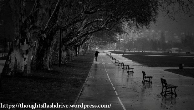 Rain & Tears